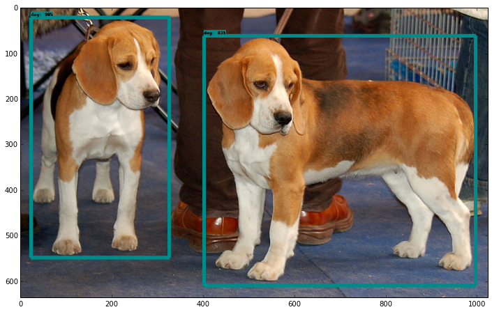 Object Detection APIの実行結果